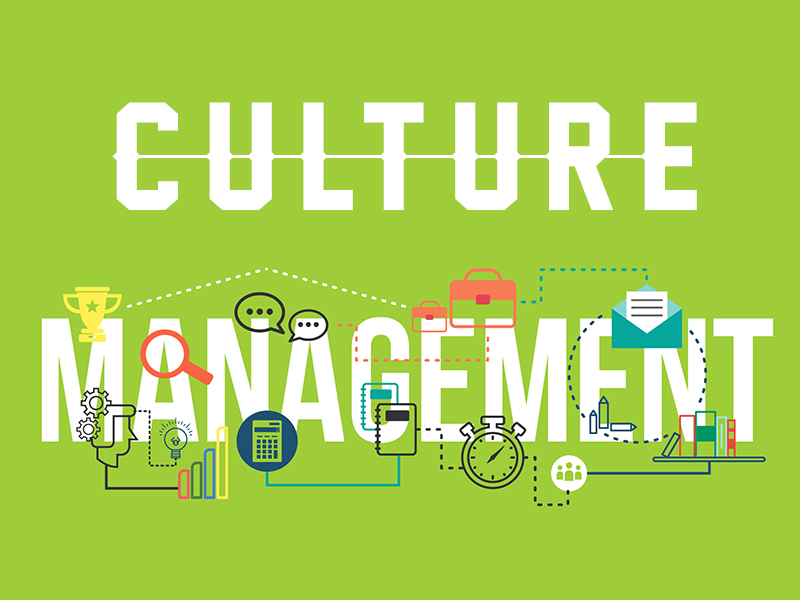 5 P's of Culture Management